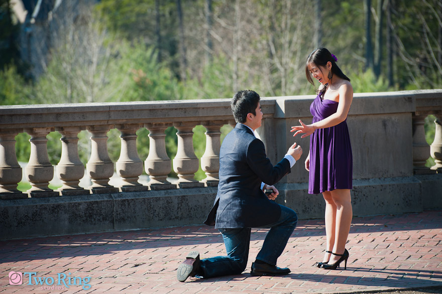 Proposal at Biltmore Estate