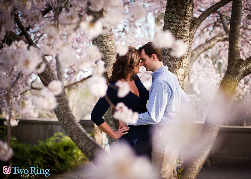 Cherry Blossom On the web Dating And Romance