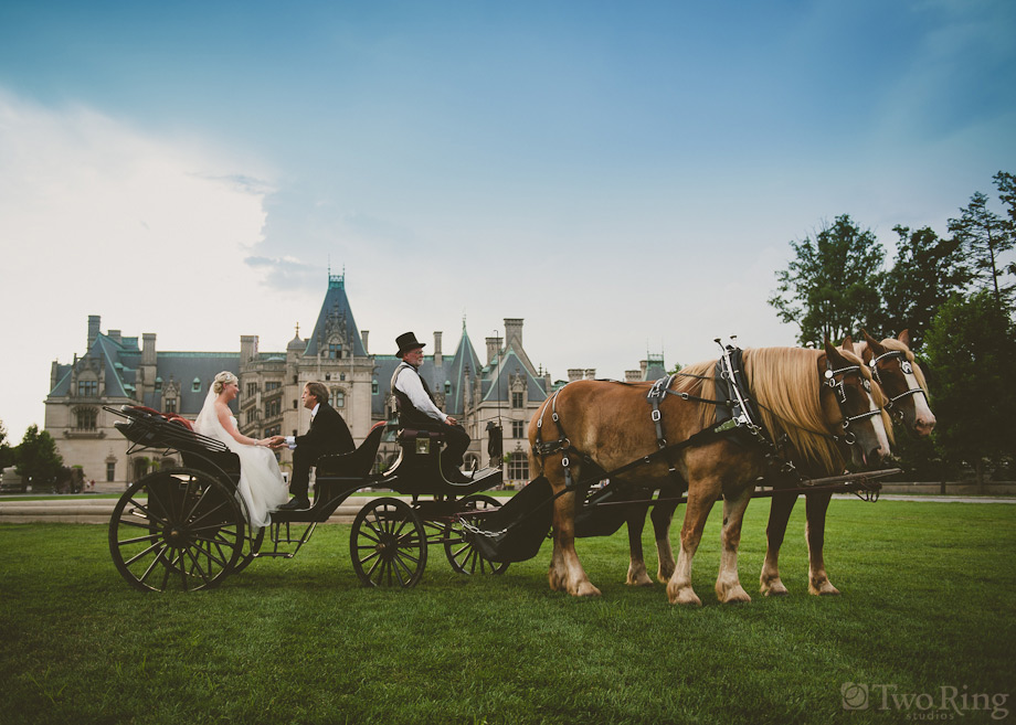 Horse and carriage in front of Biltmore house